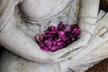 Meditatie 2